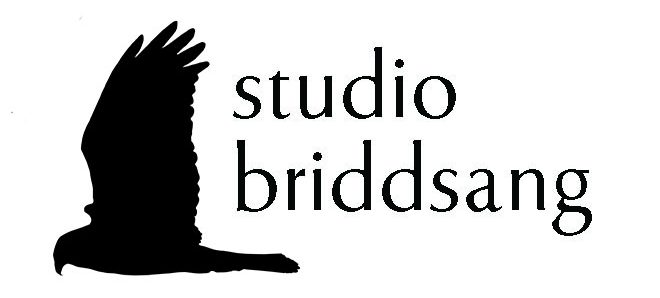 Studio Briddsang